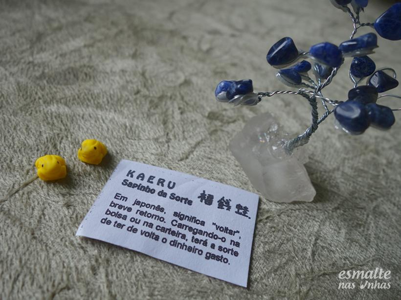compras_jardim_do_japones_pocos_de_caldas